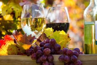 Domizil am Bodensee - Shoppen und Kulinarik: Weinregion Bodensee